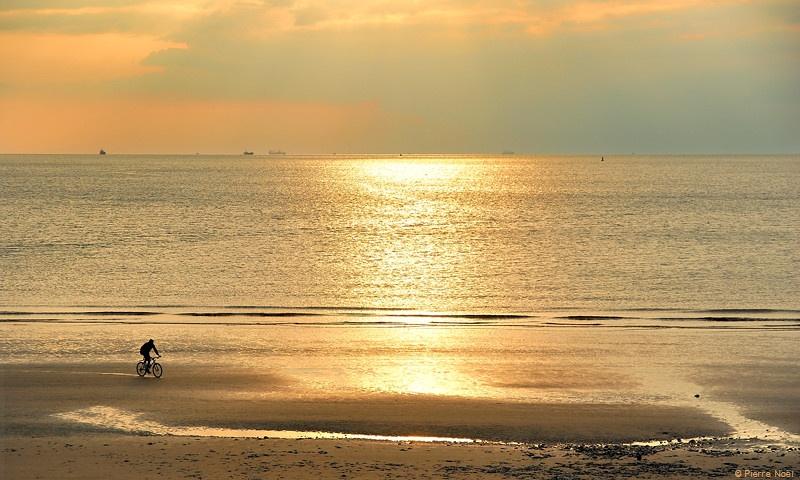 Le Havre - Lumière en Or