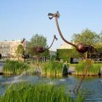 Le Havre – Les volailles (suite)