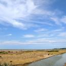 Poitou-Charentes - Mortagne en Gironde - Marais et prairies