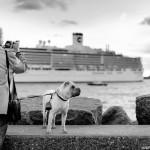 Le Havre – Le chien et son maître