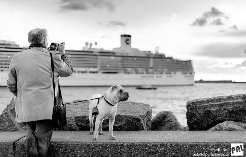 Le Havre - Le chien et son maître